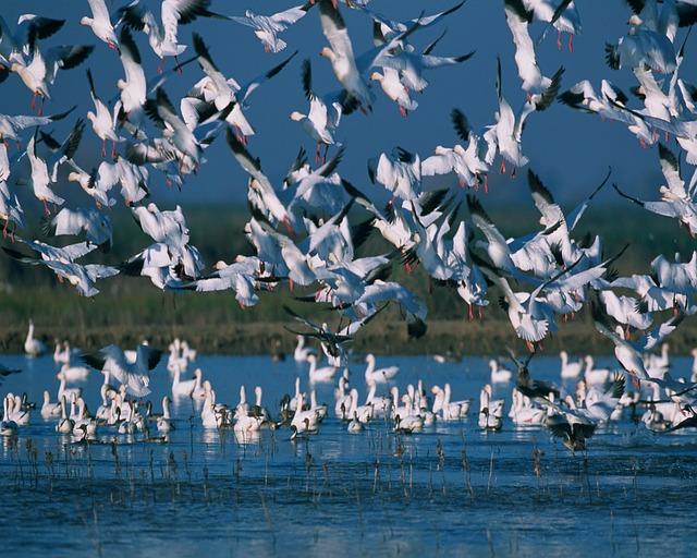 Ο εναλλακτικός τουρισμός είναι η έξυπνη μορφή διακοπών οικολογικός