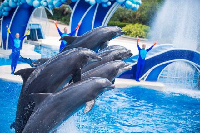 Aquatica και SeaWorld Waterparks, η απόλυτη απόλαυση!