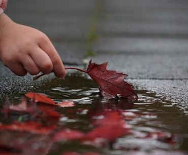 Τέσσερις ιδιαίτερες φθινοπωρινές αφηγήσεις