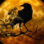 Ιστορίες μυστηρίου και ανεξήγητων φαινομένων - Β΄ Μέρος