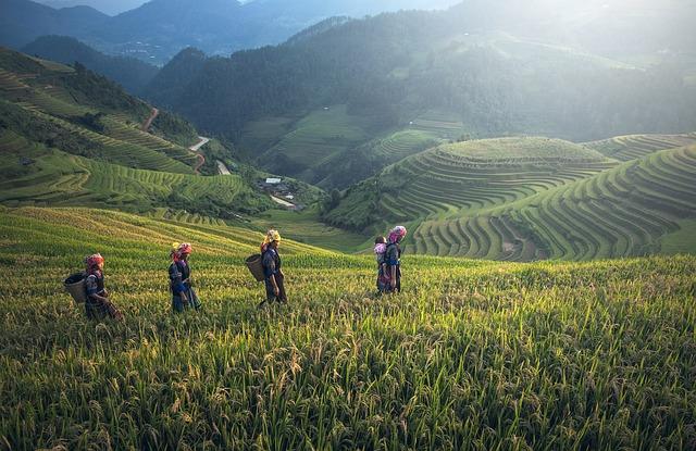 Οι πιο γνωστές μορφές εναλλακτικού τουρισμού - Αγροτουρισμός